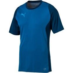koszulki sportowe męskie puma