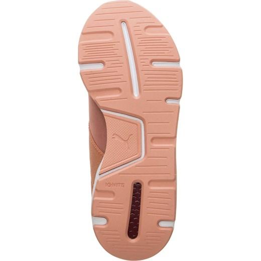 Buty sportowe damskie Puma do biegania młodzieżowe różowe płaskie bez wzorów sznurowane
