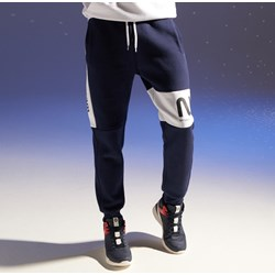 Spodnie dresowe męskie 934d65f282