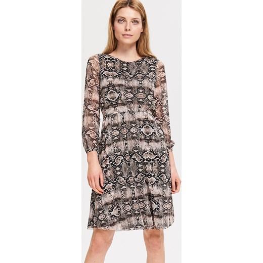 935e23f0b8 Reserved - Sukienka z motywem zwierzęcym - Wielobarwn Reserved M ...