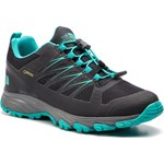 Trekkingi THE NORTH FACE - Venture Fastlace Gtx GORE-TEX T93FYZC5V Tnf Black/Ion Blue - zdjęcie produktu