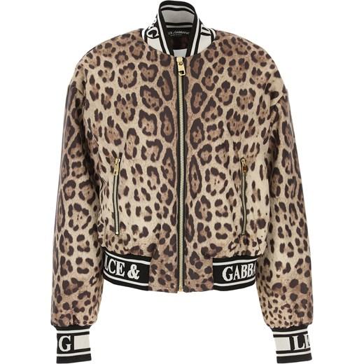 e86c2bb0fadd6 Brązowa kurtka damska Dolce & Gabbana krótka w Domodi