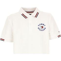 5c228ec59ade8 Białe t-shirty chłopięce tommy hilfiger, lato 2019 w Domodi