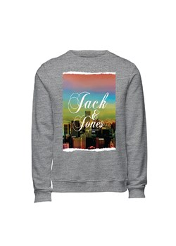 Bluza męska Jack & Jones - BLUESTILO.COM